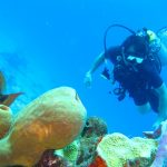 malapascua scuba diving instructor course